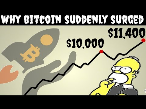 The REAL Reason Why Bitcoin's Price Spiked (Recently)