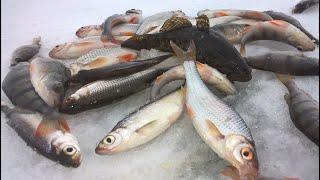 Клёвая рыбалка Открываю новый водоём