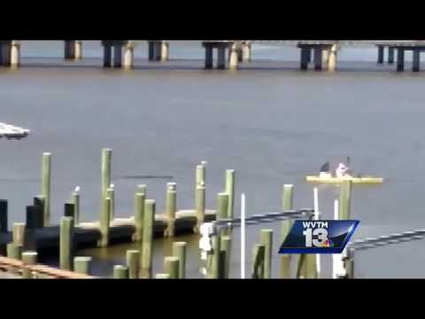 Kayaker has close encounter with gator in Mobile Bay