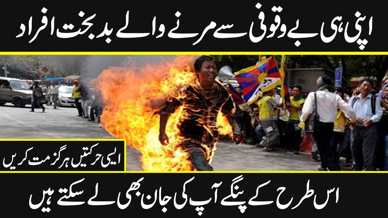 Most stupid people who made their lives in trouble   Urdu Cover