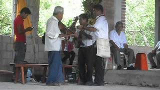 musica tradicional huasteco