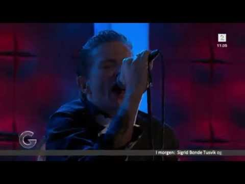 The Dogs - Anything you dont regret live God Morgen Norge, TV2