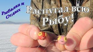 Рибалка в Гирлах Петрівці Шкотово Річиці! Риби Немає!