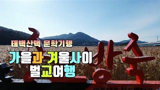 #279 전라도여행채널, 전남 보성 벌교 겨울여행, 현…