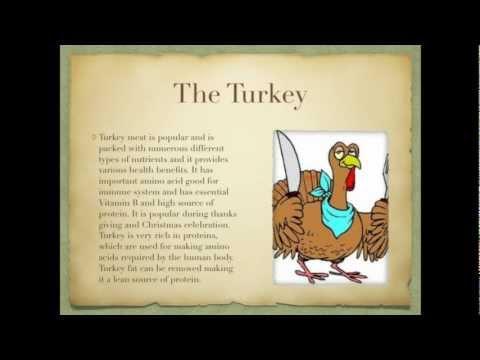 Benefits Of Turkey Meat