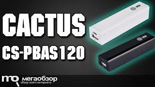 крепление для проектора CACTUS CS-VM-PR05L обзор