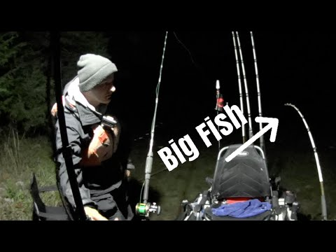 Bank Fishing With Cut Bait For LARGE Catfish And Striped Bass