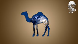 Eratosthène - Un bâton et un chameau pour mesurer la Terre - LPPV.01 - e-penser