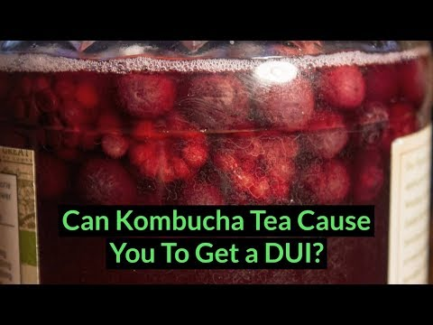 Can Kombucha Tea Cause You To Get a DUI? | Hawkins Spizman