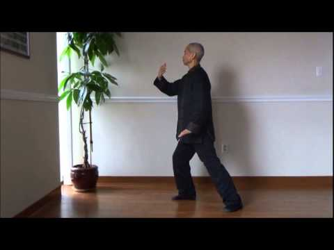 Wu Way Tai Chi Level 1 - Lao Zi Tai Chi Zhuang