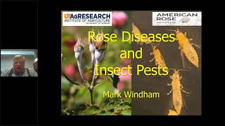 Consulting Rosarian Seminar: Insects and Disease