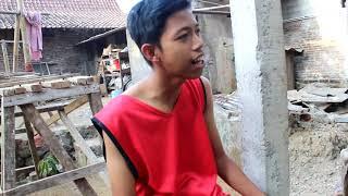 Bojo Galak (cover) Parodi - Cah Belang