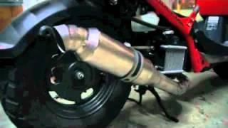 Honda Ruckus Engine Parts - YT