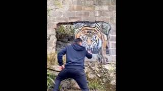 "Behold, a ""tiger"" is coming out of the wall"