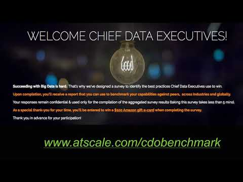 What's Your Data Strategy? How Chief Data Officers Can Succeed with Big Data