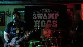 The SWAMPHOGS - Backdoor Man