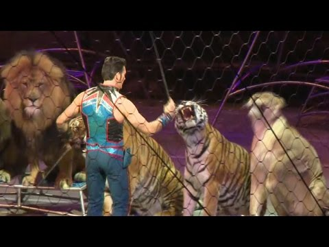 Ringling Bros Circus Takes Final Bow