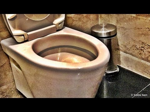 Toilet Day - Behind the News