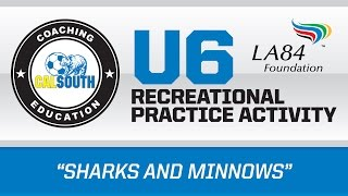 u6 sharks and minnows activity