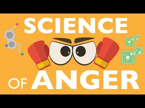 THE SCIENCE OF ANGER