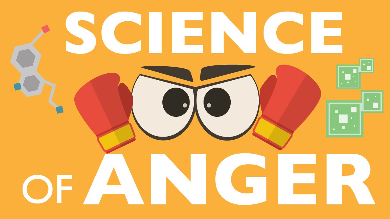 Download THE SCIENCE OF ANGER