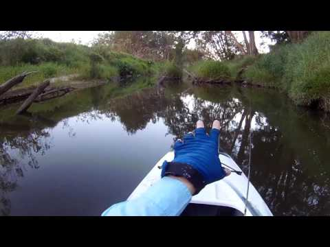 Suburban Brawlers - Australian Bass On Surface Lures In Small Local Creeks.