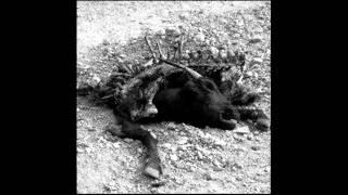 Cursed - The Last Session (Full Album)