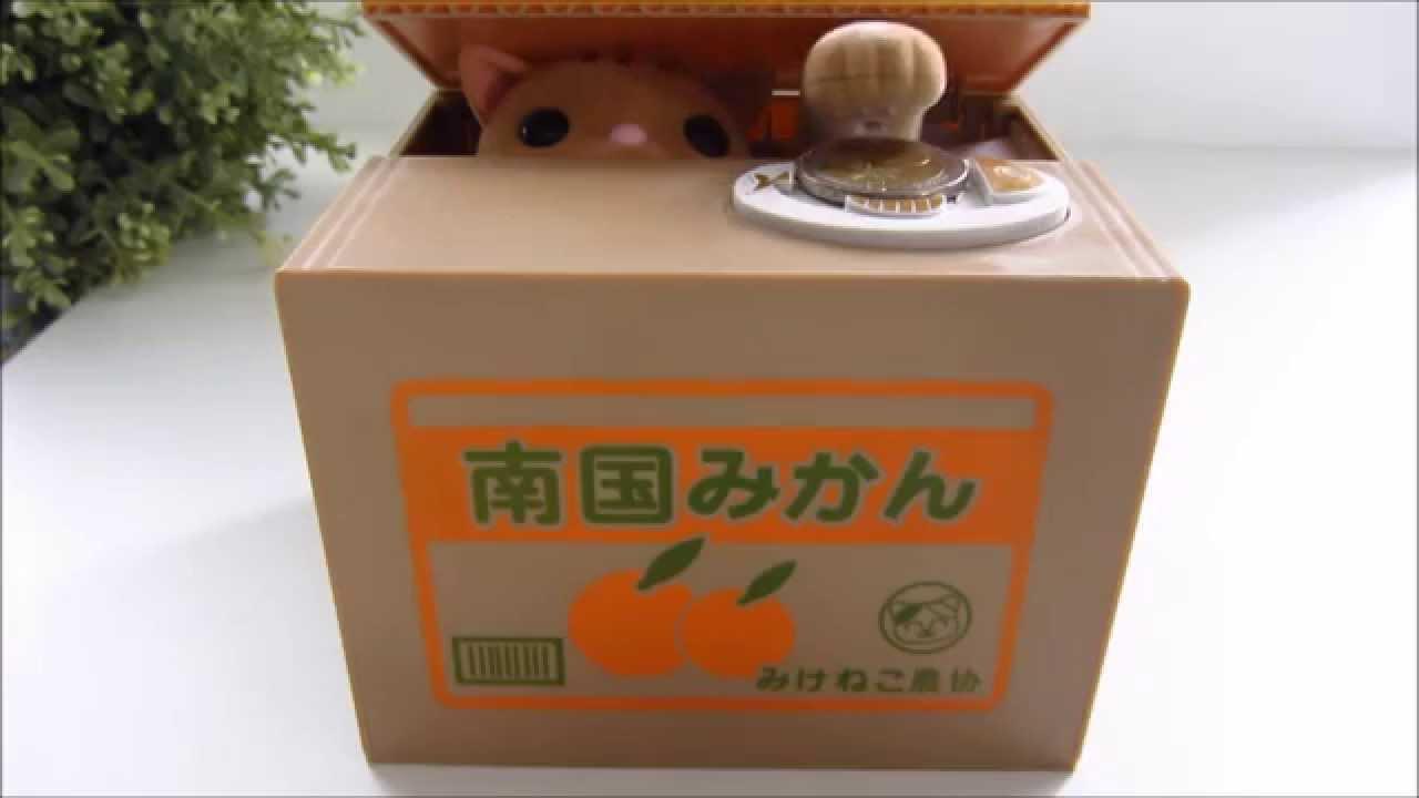 Japanese Piggy Bank Cat In Box