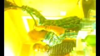 Video-2010-03-27-00-44-19