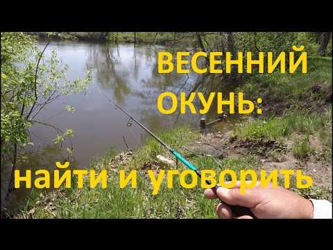Ловля окуня на микроджиг на реке: как найти и на что ловить?