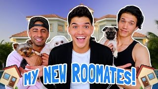 WE'RE MOVING IN TOGETHER!