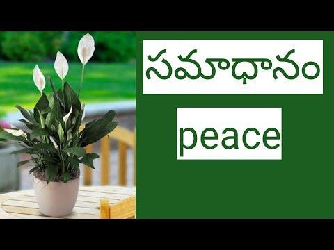 samadhanam  short sermon   Audio message   Heavenly Joy   New latest Telugu Christian message 2018