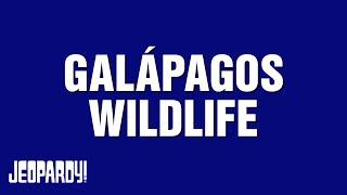 Galápagos Wildlife | Around the World With Alex Trebek | JEOPARDY!