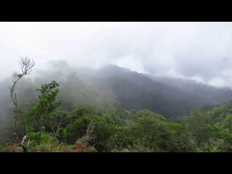 Scenery from Cusuco, Honduras