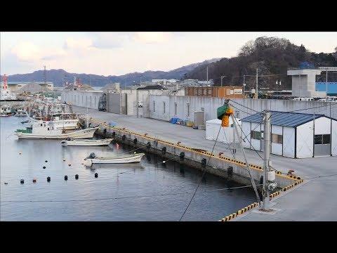 Seven years after tsunami, Japanese live alongside high sea walls