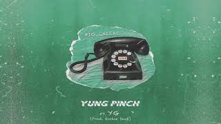 Yung Pinch - Big Checks Feat. YG (Prod. Richie Souf) [Official Animation Video)
