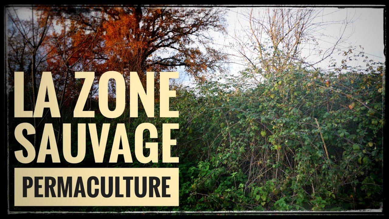 La Zone Sauvage
