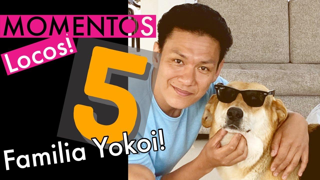 5 momentos Yokoi!