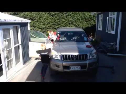Doddy cleaning car