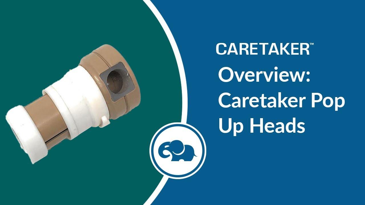 Identify Your Caretaker Pop Up Head