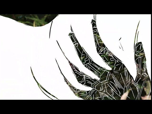 PIKNIK POD WISZĄCĄ SKAŁĄ - animacje AS 14