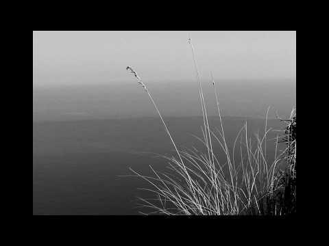 Puerto Pollensa (A Short Film)