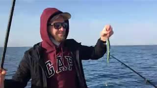 Морская рыбалка в Сочи 1