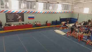 29.10.2017, vault, 3d senior (sport) level