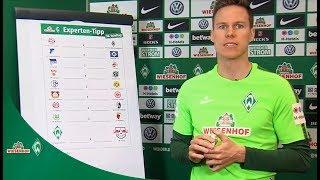 WIESENHOF: Werder-Expertentipp 30. Spieltag