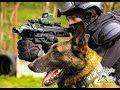 K9 Swat Training Slovakia