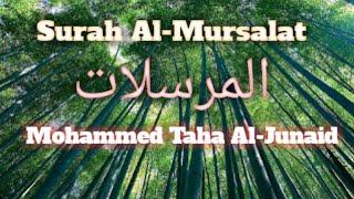 Gambar cover Surah Al-Mursalat Merdu Irama Kurdi - Mohammed Taha Al-Junaid