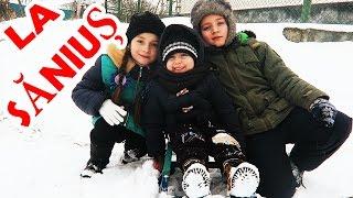 La Sanius si Frigarui Vlog Mergem la Nord la Verisorii lui Alex