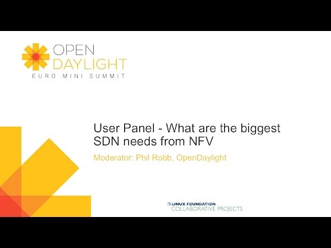 User Panel - What Are The Biggest SDN Needs From NFV