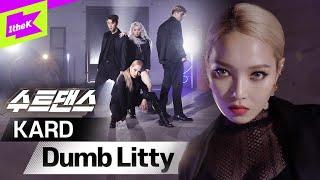 K-POP컨셉장인!믿고보는신용KARD | KARD(카드) _ Dumb Litty |수트댄스| Suit Dance